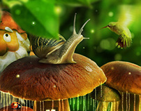 A Mushroom Life