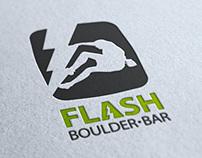 logo for flash