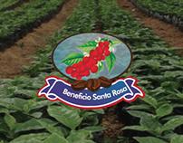 Propuestas Beneficio Santa Rosa