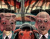 Pig Politics