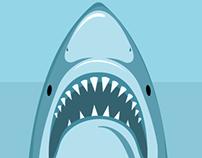 Requin face à la vérité