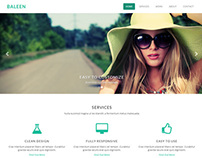 Baleen – One Page Responsive Bootstrap Parallax Theme