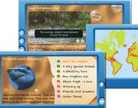 Interactive Children's book ~ Dolphins