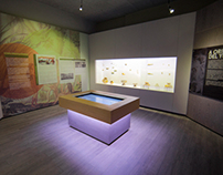 Museo del Atlántico