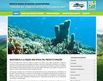 Website Proyecto Corazón - Banco Mundial /SERNA