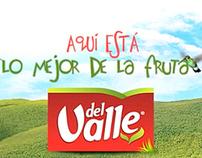 Del Valle Home Site