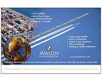 Avalon Risk Management: Ads, Fliers & Handouts