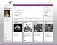 Modyne - Website