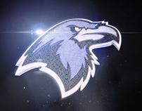 Houston Ravens | Sports Branding + Identity