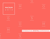 PacSun 2013 | Interactive Digital Experience
