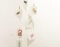 Los Pájaros Uno (2013)
