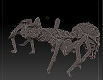 Ant zbrush