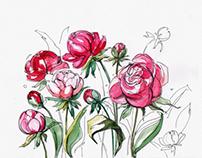 Flower's inspiration
