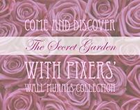 The Secret Garden - Wall Murals