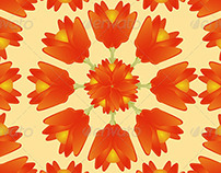 Ornament Pattern Flowers Backgrounds Pack