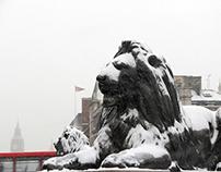 Snow in London/2013