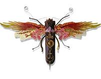 Mariner Moth