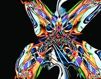 Mariposa de Vidrio
