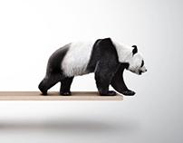 WWF Ad Campaign