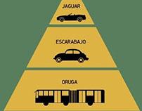 Pirámide de fauna vehicular mexicana