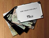 OfficeTeam   Direct mail campaign brochure design