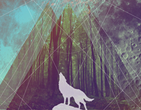 kaiote album cover