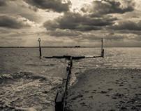 Mersea Seascapes
