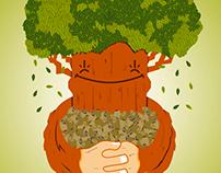 Greenstore Growshop (propuesta)