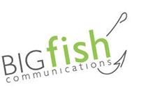"BIGfish Communications ""BIG Ideas"" Blog Posts"