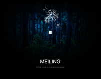 Website Design: Meiling - Caribbean Fashion Icon