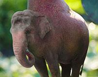 D'Anjou Elephant