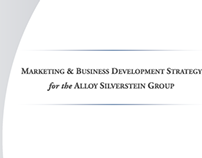 Professional Marketing and Business Development Plan
