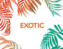 Exotic / Adolfo Dominguez