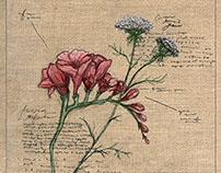 Pillow Design: Field Drawing