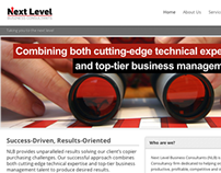 Next Level Business Consultants Website & Logo