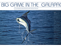 Destination Fish, Galapagos feature, Fall 2007