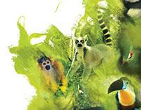 Monkeyland illustration and photo composite