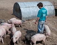Pork Provenance photo