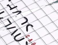 Chaos Flip Book