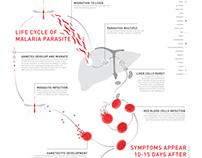 Malaria Infographic