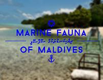 Marine Fauna of Maldives - Episodes