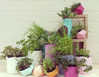 Resin Planters at Sydney Indesign with PEPO Botanical