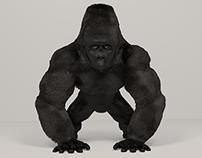 Gorilla (3d character)