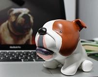 Roonie / bulldog amigo