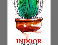 Propuesta portadas para plantas de exterior e interior