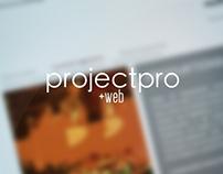 Brand Project Pro - Webdevelopment (Vers. 1.0)