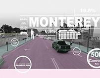 Monterey Site Analysis Infographics