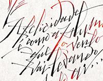 Poster for Vinícius de Moraes' Centenary