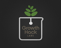 Growth Hack Labs Animated Logo