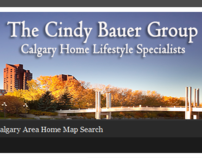 The Cindy Bauer Group
